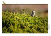 White-crowned Sparrow In A Bush Carry-all Pouch