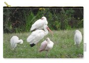 White Ibis Bliss Carry-all Pouch