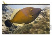 White Spotted Filefish Carry-all Pouch
