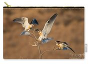 White-tailed Kite Trio Carry-all Pouch