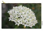 White Umbel Carry-all Pouch