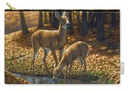 Whitetail Deer - Autumn Innocence 1 Carry-all Pouch by Crista Forest