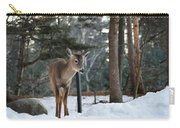Whitetail In Woods Carry-all Pouch