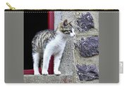 Who Goes There - Kitten Carry-all Pouch