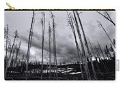 Wild Fire Aftermath In Black And White Carry-all Pouch