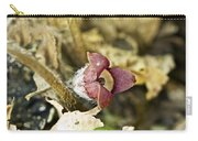 Wild Ginger Wildflower - Asarum Canadense Carry-all Pouch