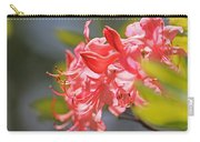 Wild Pink Azalea At Moore State Park Carry-all Pouch
