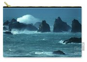 Wild Waters 2 Carry-all Pouch