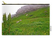 Wildflowers And Mountainous Bluffs At Point Amour In Labrador Carry-all Pouch