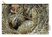 Willet Catoptrophorus Semipalmatus Eggs Carry-all Pouch