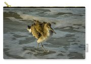 Willet Washing 1 Carry-all Pouch