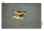 Willet Washing 6 Carry-all Pouch
