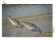 Willets Carry-all Pouch