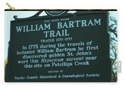 William Bartram Carry-all Pouch
