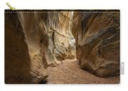 Willis Creek Slot Canyon 1 - Grand Staircase Escalante National Monument Utah Carry-all Pouch