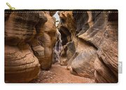 Willis Creek Slot Canyon 6 - Grand Staircase Escalante National Monument Utah Carry-all Pouch