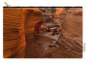 Willis Creek Slot Canyon Carry-all Pouch by Robert Bales