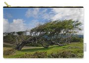 Wind-bent Tree In Tierra Del Fuego Patagonia  Carry-all Pouch