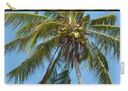 Windblown Coconut Palm Carry-all Pouch