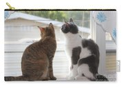 Window Cats Carry-all Pouch