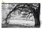 Window Oak - Bw Carry-all Pouch