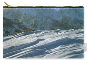 1m9342-windswept Snow Carry-all Pouch