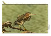 Windy Morn Green Heron Carry-all Pouch