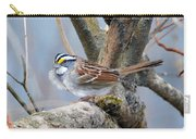 Windy Perch Carry-all Pouch