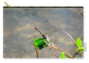 Winged Critter Carry-all Pouch