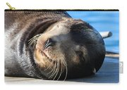 Wink Wink Carry-all Pouch by Christy Pooschke