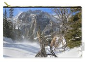 Winter At Loch Vale Carry-all Pouch