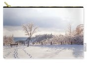 Winter At Scarborough Bluffs Carry-all Pouch