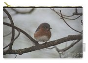 Winter Blue Bird 1 Carry-all Pouch
