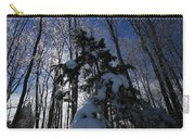 Winter Blue Carry-all Pouch by Karol Livote