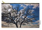 Winter Blue Skys Carry-all Pouch