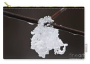 Winter Detail Carry-all Pouch by Elena Elisseeva