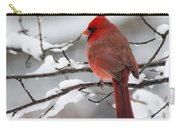 Winter In Red Carry-all Pouch