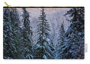 Winter Lodging Carry-all Pouch