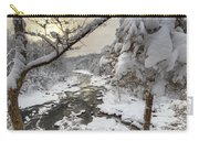 Winter Morning Carry-all Pouch by Bill Wakeley