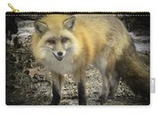Winter Nature At Howell Nature Center Carry-all Pouch