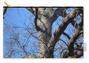 Winter Oak 2014 Carry-all Pouch