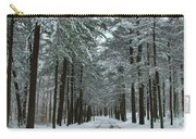 Winter On Mohegan Park Road Carry-all Pouch