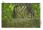 Winter Park Florida Owl Carry-all Pouch