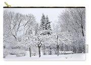 Winter Park Landscape Carry-all Pouch