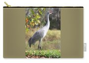 Winter Sandhill Crane Carry-all Pouch