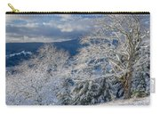 Winter Scene At Berry Summit Carry-all Pouch