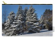 Winter Scenic Landscape Carry-all Pouch