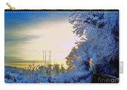 Winter Sunburst Carry-all Pouch
