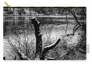 Winter Waterscape Carry-all Pouch