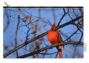 Winter's Red Beauty 5 Carry-all Pouch